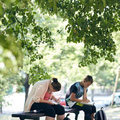 Mein Künstlertagebuch – Zeichnen im Park