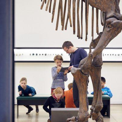 Urtiere und Meereswesen II – Vor dem Mammutskelett