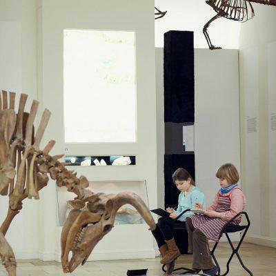 Fantasieren mit Pflanzen und Tieren III – Im Landesmuseum für Vorgeschichte