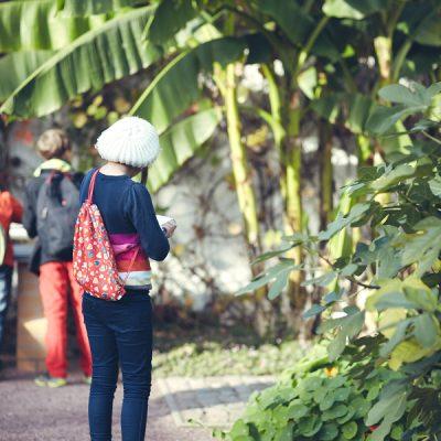 Fantasieren mit Pflanzen und Tieren II – Im Botanischen Garten