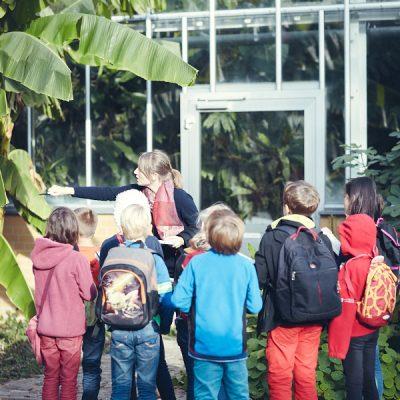 Fantasieren mit Pflanzen und Tieren I – Vor dem Tropenhaus