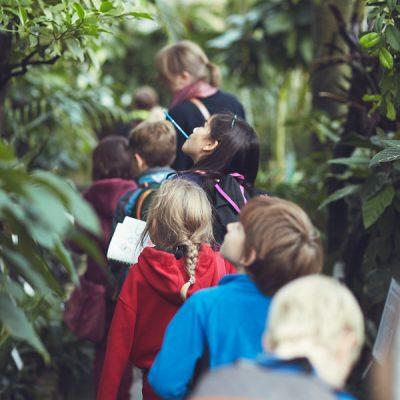 Fantasieren mit Pflanzen und Tieren I – Unterwegs durch das Tropenhaus