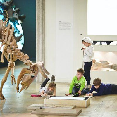 Fantasieren mit Pflanzen und Tieren I – Im Landesmuseum für Vorgeschichte