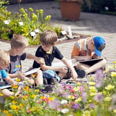 Sommer Sonne Garten II – Am Blumenbeet