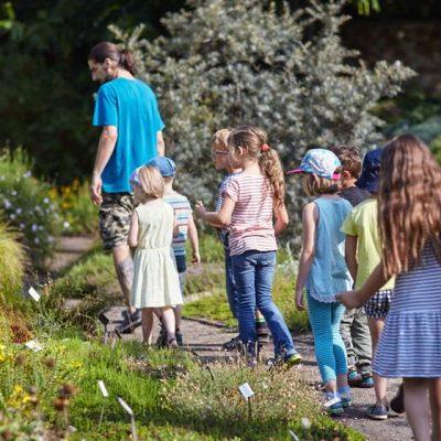 Sommer Sonne Garten III – Rundgang