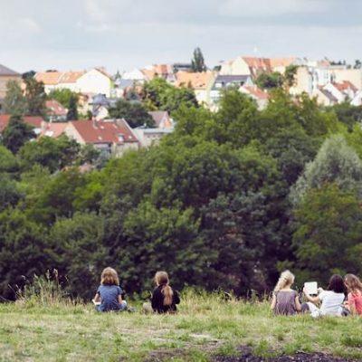 Wunderland Wald II – Ausblick auf Kröllwitz von den Klausbergen