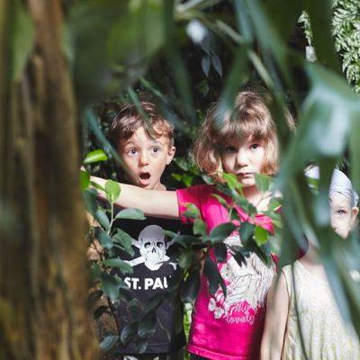 Sommer Sonne Garten III – Im Tropenhaus