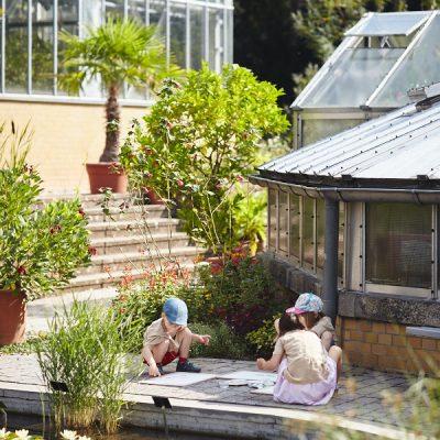 Sommer Sonne Garten III – Am Seerosenteich