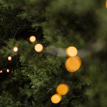 Seid Ihr auch schon in Weihnachtsstimmung?
