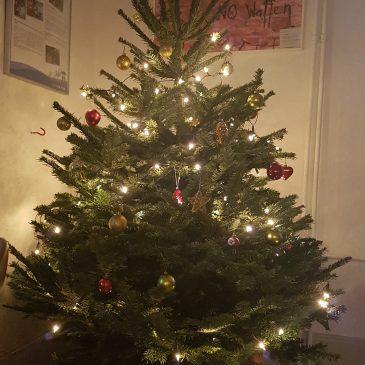 Einen Weihnachtsbaum für das SCHIRM-Projekt
