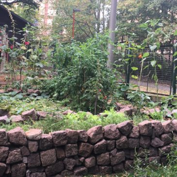 """Gartenprojekt """"Querbeet"""""""